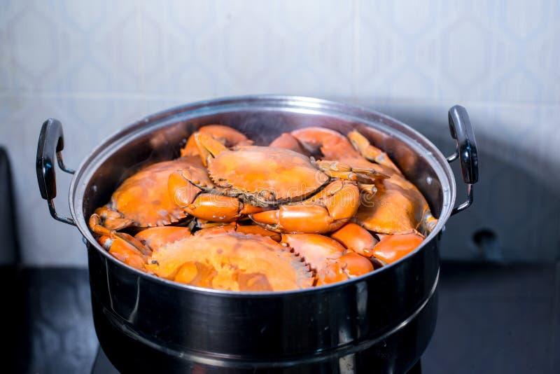 Cangrejo cocido al vapor en pote cangrejos vivos en un pote cocido al vapor de los cangrejos melenudos de Shangai al vapor imágenes de archivo libres de regalías