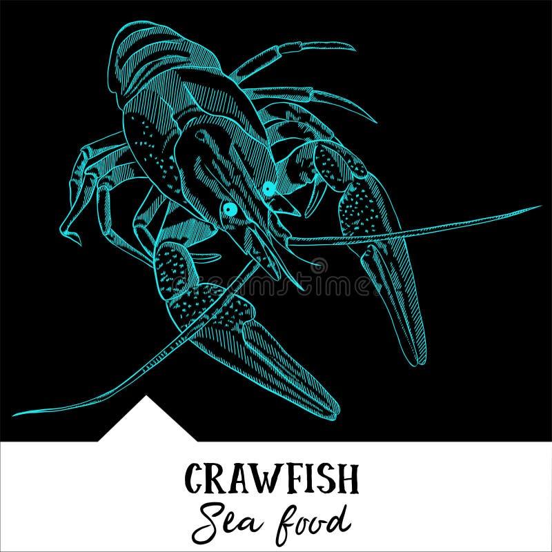Cangrejos del ejemplo del vector para un menú de los mariscos libre illustration