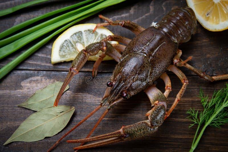 cangrejos El rojo hirvi? crawfishes en la tabla en estilo r?stico, primer Primer de la langosta foto de archivo libre de regalías