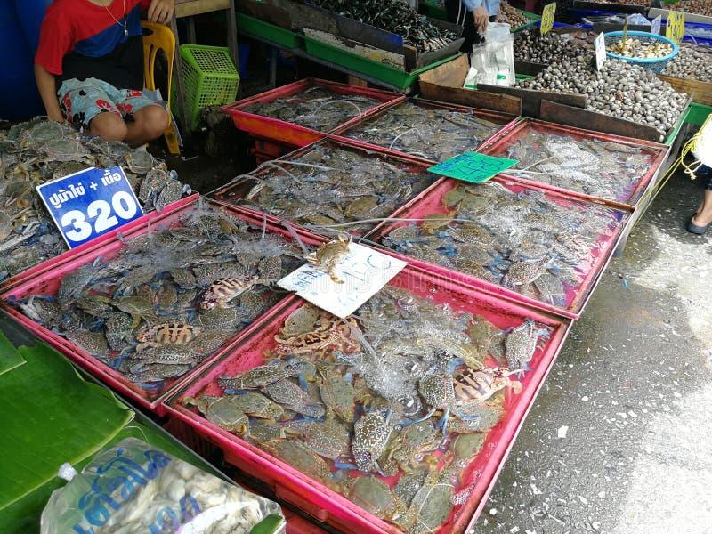 Cangrejos en un mercado de los mariscos imágenes de archivo libres de regalías