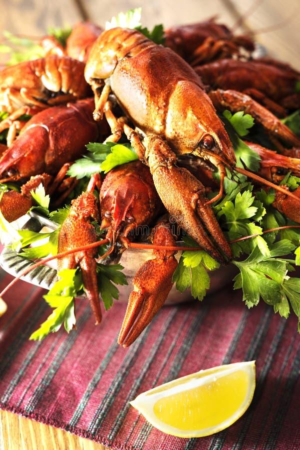 Cangrejos hervidos foto de archivo libre de regalías