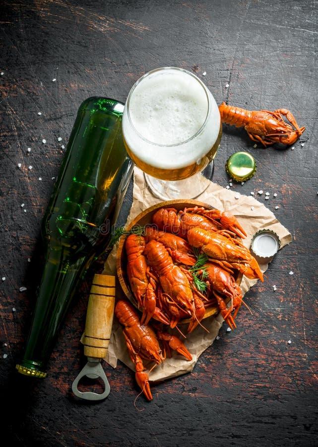 Cangrejos hervidos rojos en una placa en el papel con la cerveza en un vidrio y una botella fotografía de archivo libre de regalías