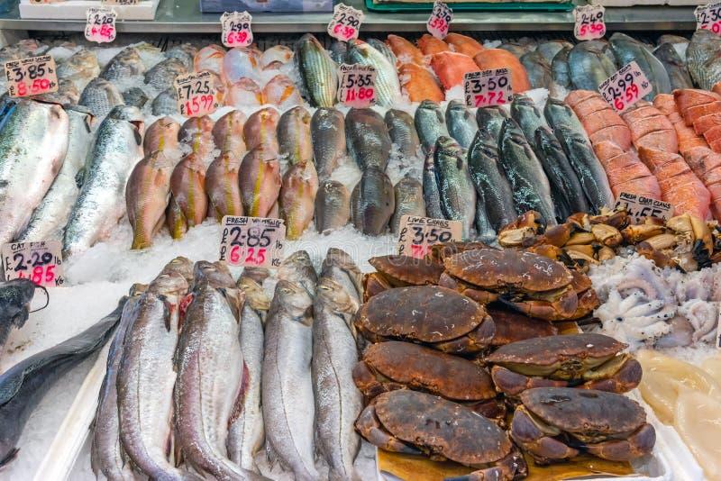 Cangrejos, pulpo y otros pescados en venta foto de archivo libre de regalías
