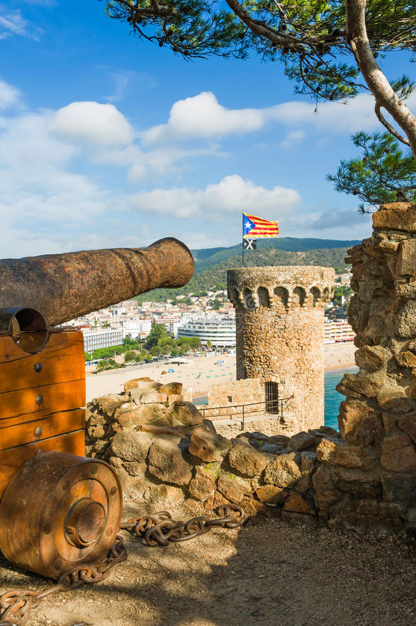 Canhão velho na fortaleza foto de stock royalty free