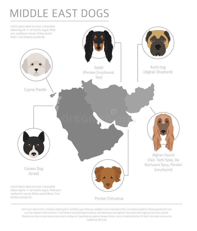 Cani da pæse d'origine Razze del cane del Vicino Oriente, cani persiani I royalty illustrazione gratis