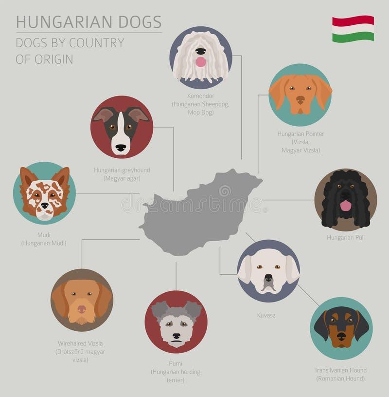 Cani da pæse d'origine Razze ungheresi del cane Tem di Infographic royalty illustrazione gratis
