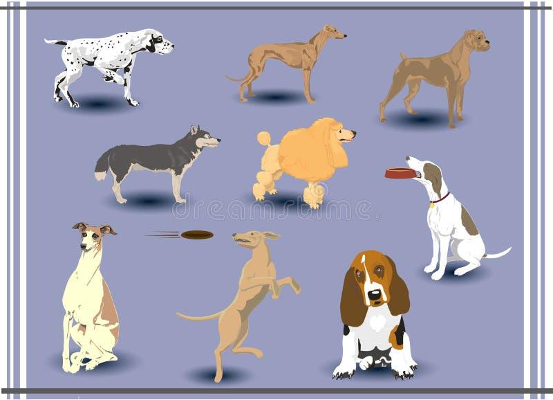 Cani di vettore royalty illustrazione gratis