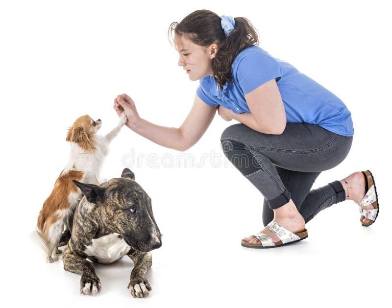Cani, proprietario ed obbedienza fotografie stock libere da diritti