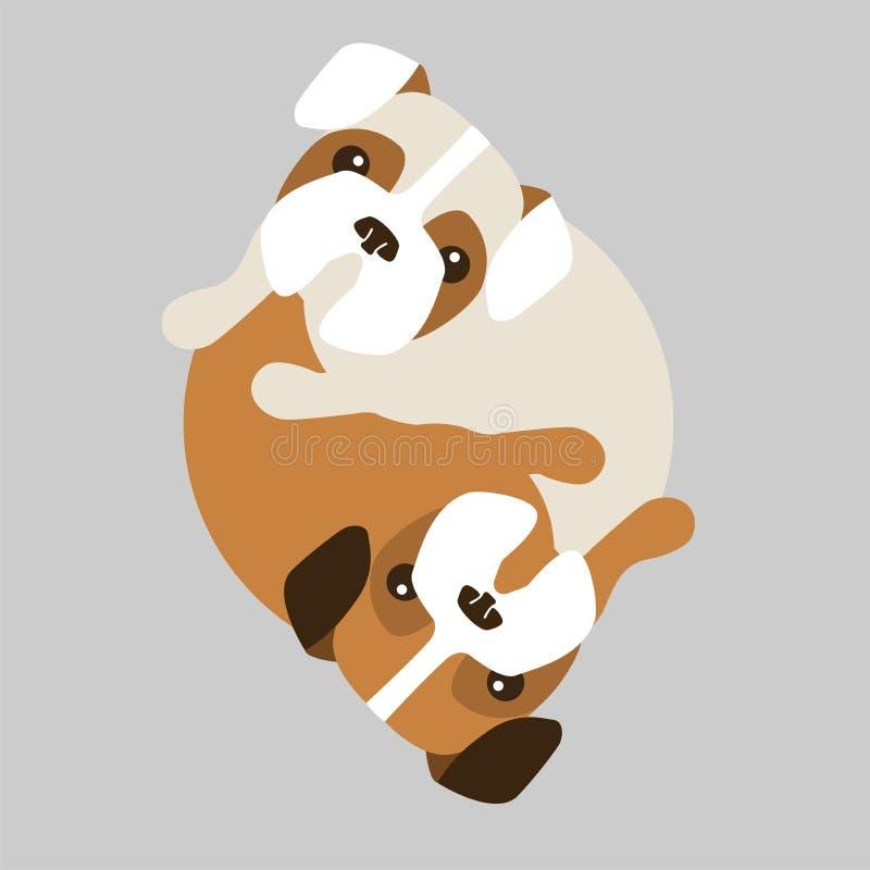 Cani in un cerchio illustrazione di stock