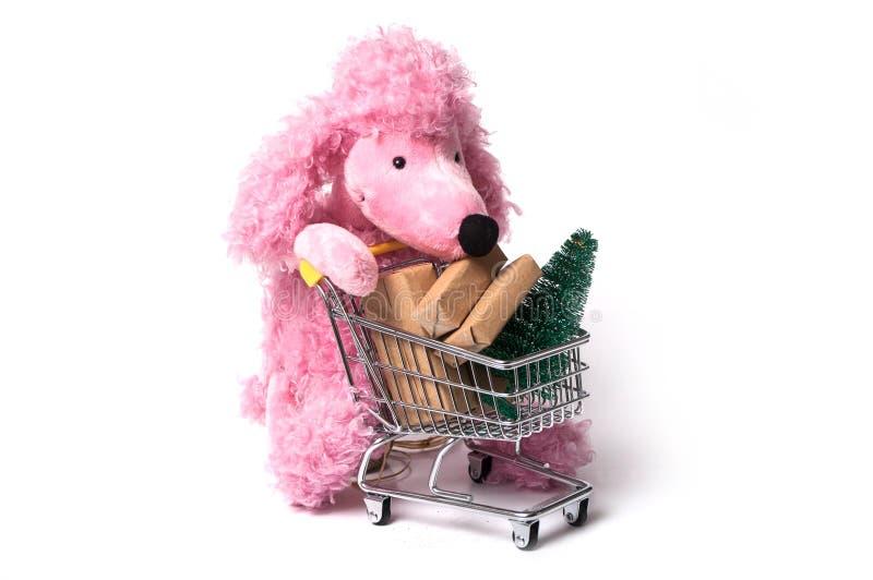 caniche cor-de-rosa que empurra um trole no fundo branco - c fotografia de stock royalty free
