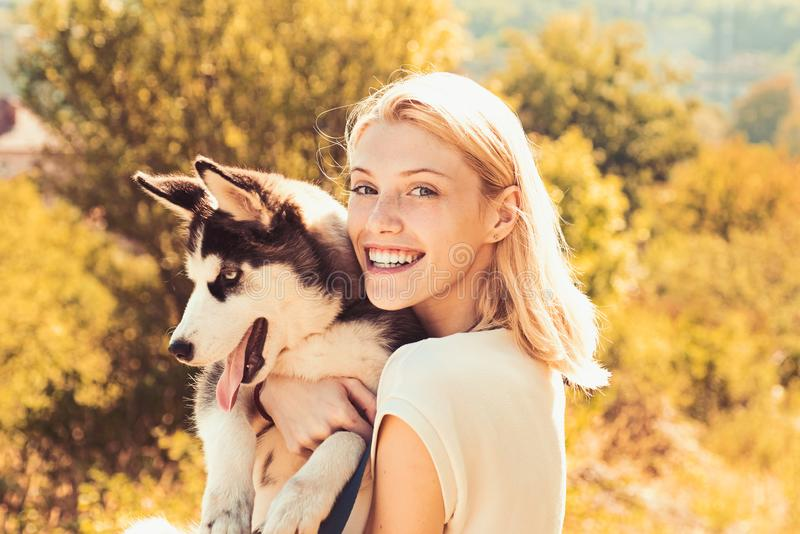 Canine companion. Happy dog owner play with family pet outdoor. woman with dog pet on summer day. Happy girl hold. Pedigree dog. This girl loves her siberian stock photos