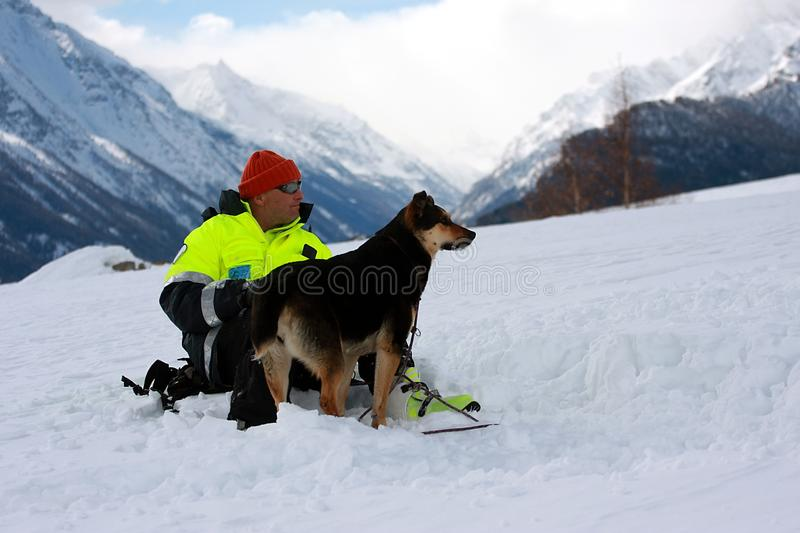 Download Canine unit editorial stock photo. Image of serching - 18611443