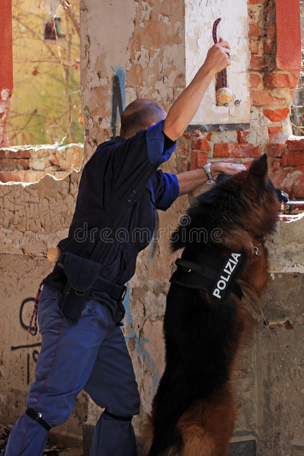 Canine Unit Of Police Editorial Stock Image