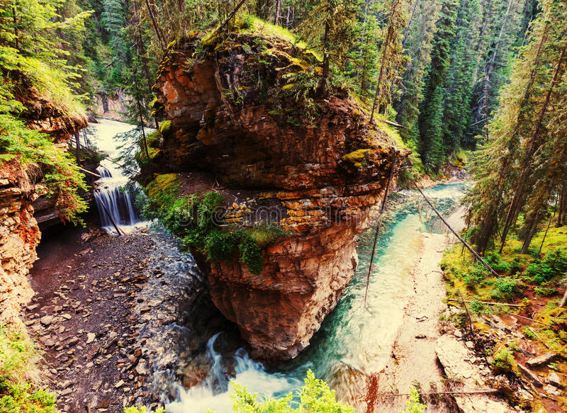 Canion in Banff NP stock foto