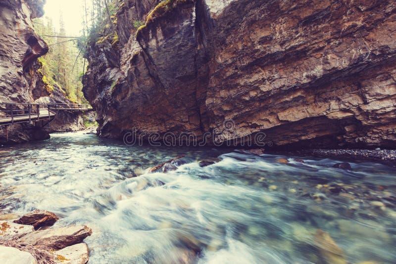 Canion in Banff NP royalty-vrije stock afbeeldingen