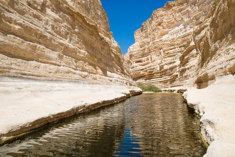 Canion ein-Avdat in de Negev-woestijn royalty-vrije stock afbeeldingen