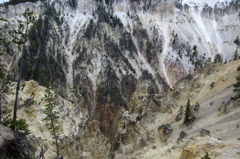 Canion van het Yellowstone de Nationale Park stock afbeeldingen
