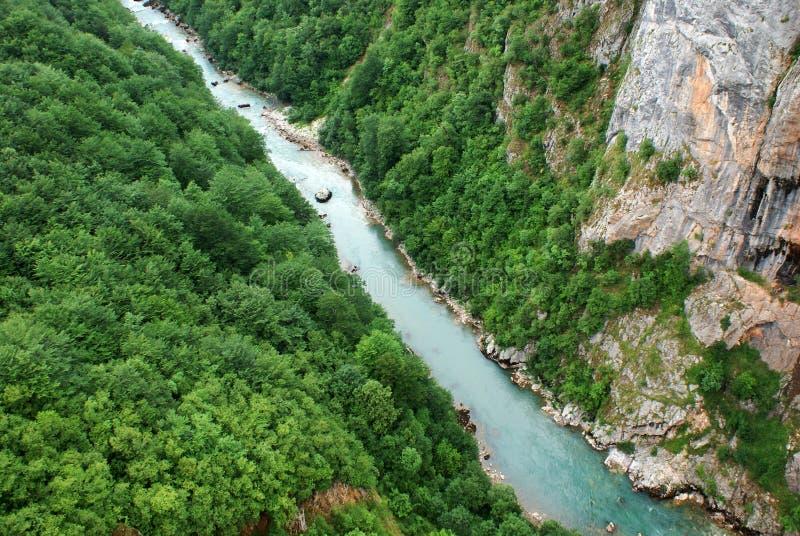 Canion van Tara rivier stock foto's