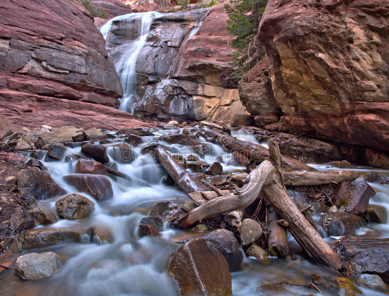 Canionwaterval in Colorado Rocky Mountains royalty-vrije stock afbeelding
