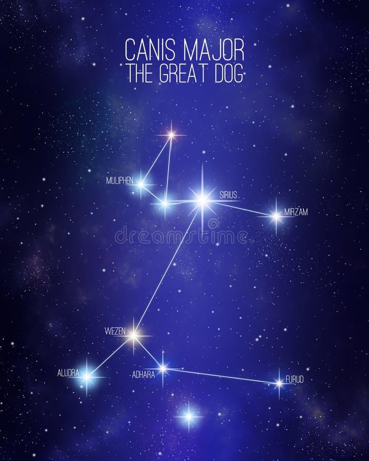 Canis Major a constelação do grande cão em um fundo estrelado do espaço ilustração royalty free