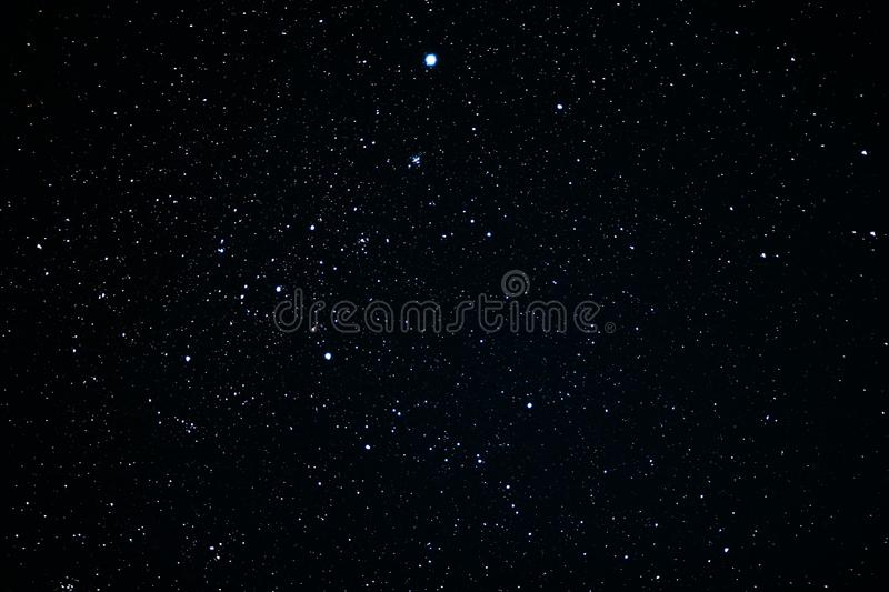 Canis Major-constellatie royalty-vrije stock foto's