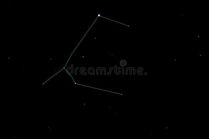 Canis Major-constellatie royalty-vrije stock foto