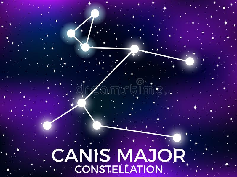 Canis Major constellation. Starry night sky. Cluster of stars and galaxies. Deep space. Vector. Illustration royalty free illustration