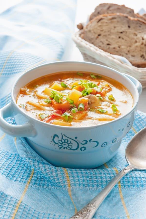 Canja de galinha com macarronetes e vegetais fotos de stock
