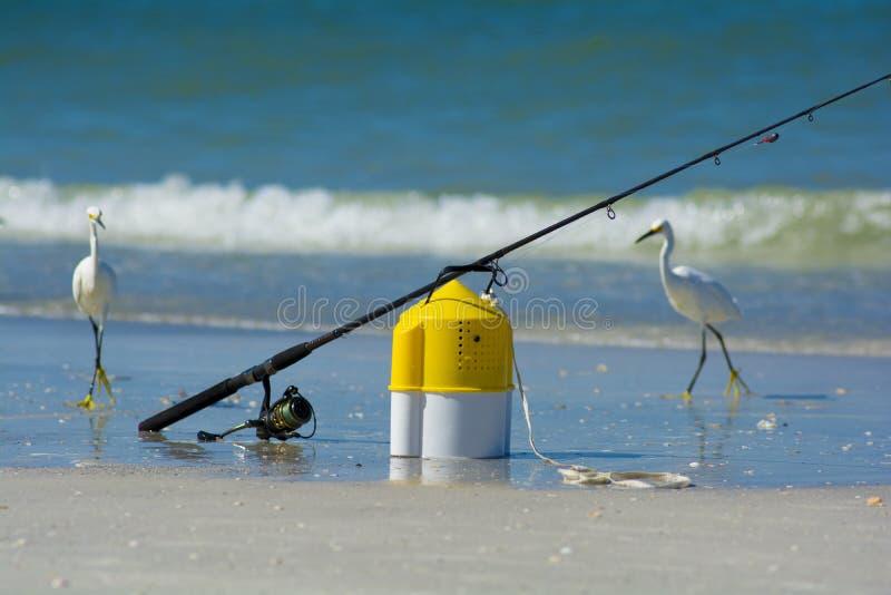 Canna da pesca con il secchio dell'esca immagine stock libera da diritti
