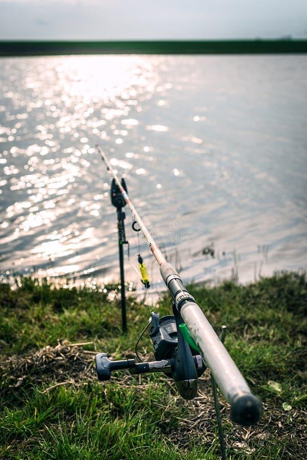 Download Canna Da Pesca Sull'erba Vicino Al Lago Fotografia Stock - Immagine di hobby, pesci: 30831840