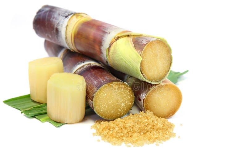 Canna da zucchero e zucchero bruno su fondo bianco fotografia stock libera da diritti