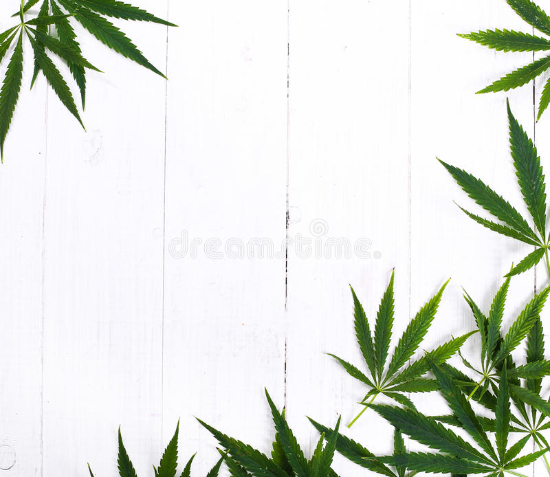 cannabis royalty-vrije stock foto's
