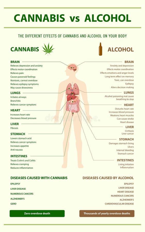 Cannabis contra o vertical do álcool infographic ilustração royalty free