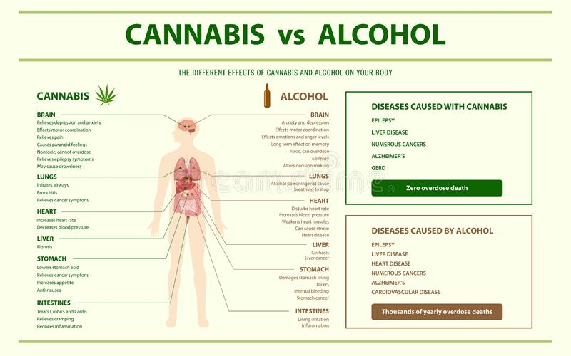 Cannabis contro l'orizzontale dell'alcool infographic illustrazione di stock