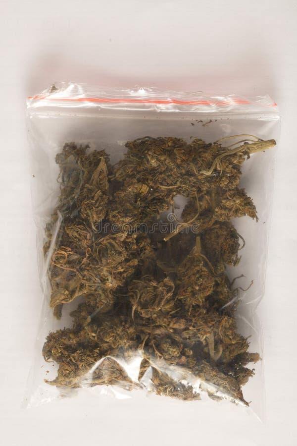 Cannabis dell'hashish e della canapa indiana immagine stock
