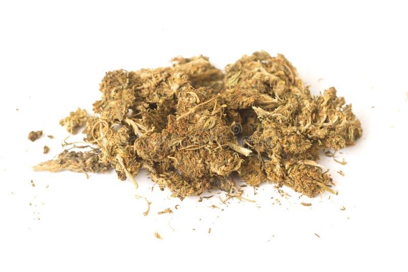 Cannabis dell'hashish e della canapa indiana immagine stock libera da diritti