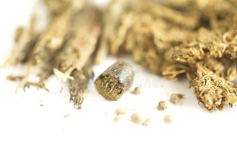 Cannabis dell'hashish e della canapa indiana fotografie stock