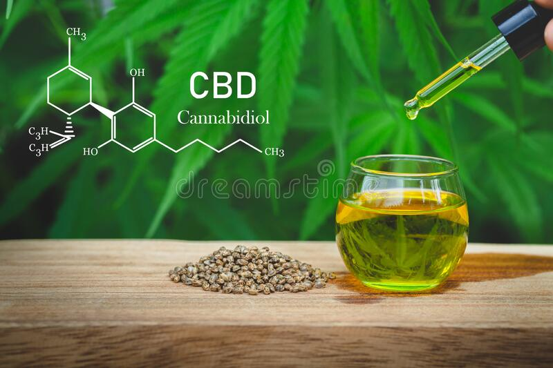 Cannabis of the formula CBD cannabidiol. Hemp seeds and  droplet dosing a biological and ecological hemp plant herbal stock images
