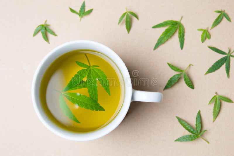 Cannabis herbal tea and marijuana leaves stock photos