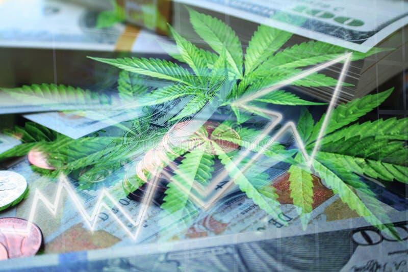 Cannabis Industry Profits Exploding With Stacks Of Money & Marijuana Leaves High Quality stock photo