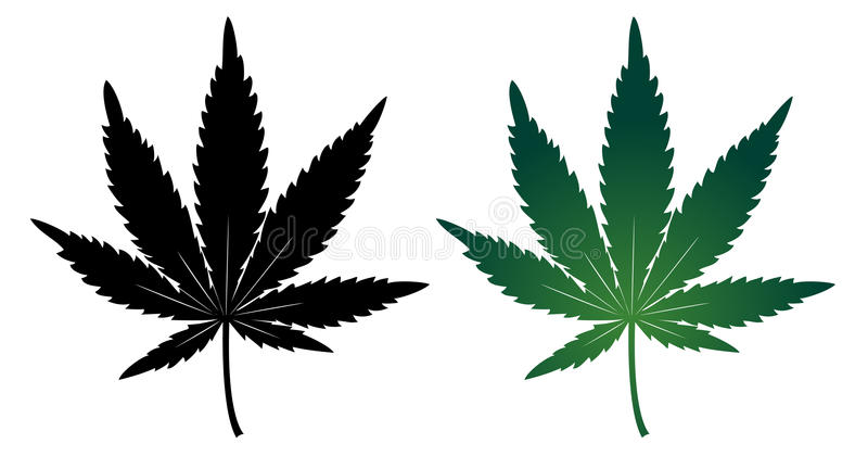 Cannabis leaf. Green and silhouette; isolated on white vector illustration