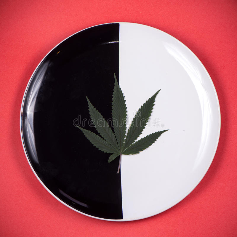 Cannabis leaf on a dish - medical marijuana infused edibles concept royalty free stock photos
