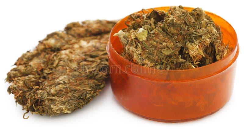 Cannabis medicinal imagens de stock