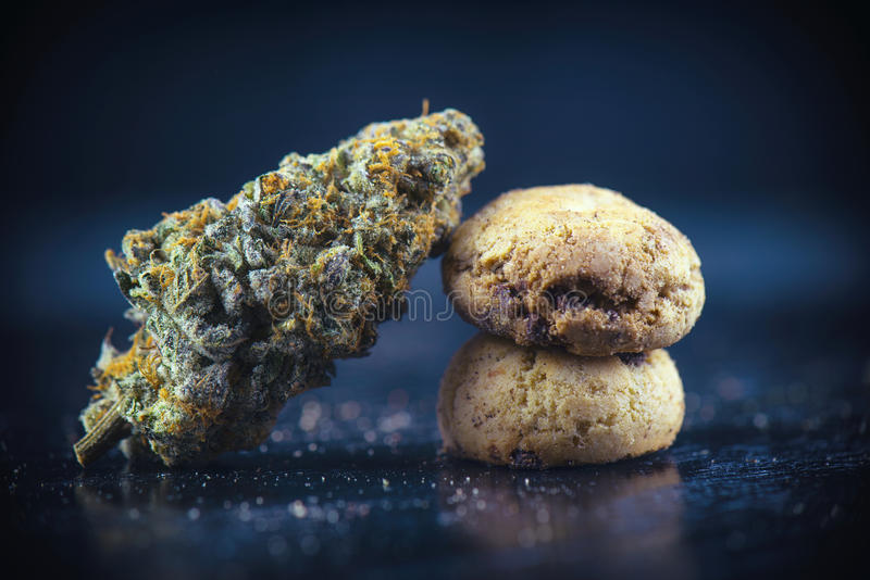 Cannabis nug over infused chocolate chips cookies - medical mari. Detail of single cannabis nug over infused chocolate chips cookies - medical marijuana edibles royalty free stock images