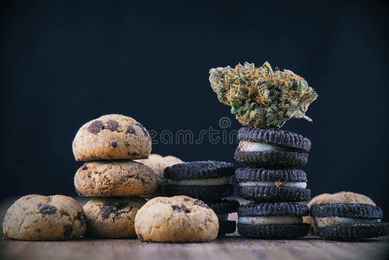 Cannabis nug over infused chocolate chips cookies - medical mari. Detail of single cannabis nug over infused chocolate chips cookies - medical marijuana edibles stock photos