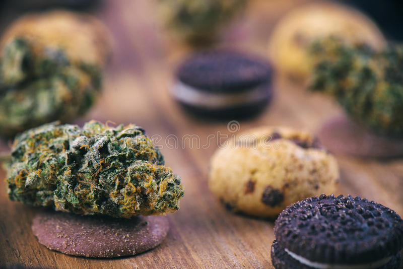 Cannabis nugs over infused chocolate chips cookies - medical mar. Background with cannabis nugs over infused chocolate chips cookies - medical marijuana edibles stock image