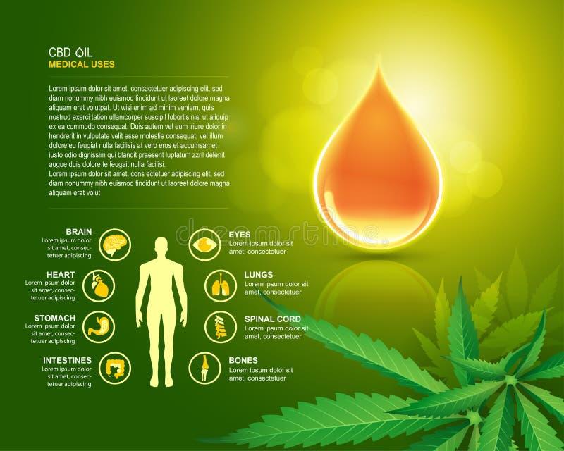 CBD oil uses stock illustration