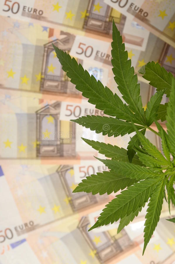 Download Cannabis Plant And Lot Of Fifty Euro Banknotes Stock Photo - Image: 25690336