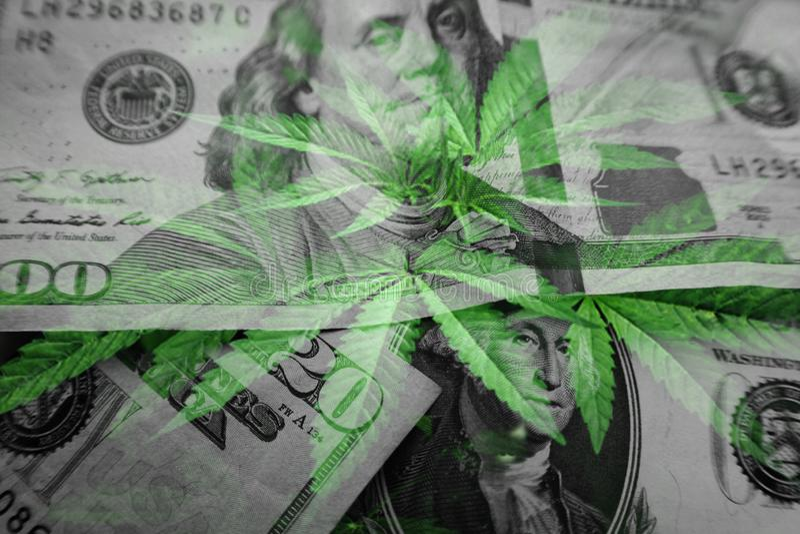 Cannabis Profits Concept With Money & Marijuana Leaves High Quality stock photos