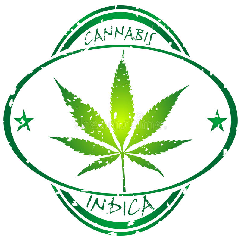 Cannabis stamp vector illustration